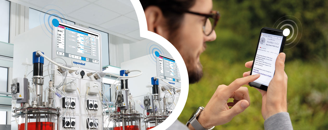 Man looking at a mobile phone with VisioNize to check a SciVario twin bioreactor/fermenter control system