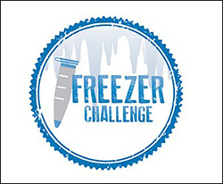 2019 International Freezer Challenge