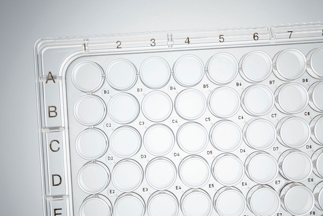 Eppendorf cell culture plates with a high-contrast alphanumeric labeling of the wells.