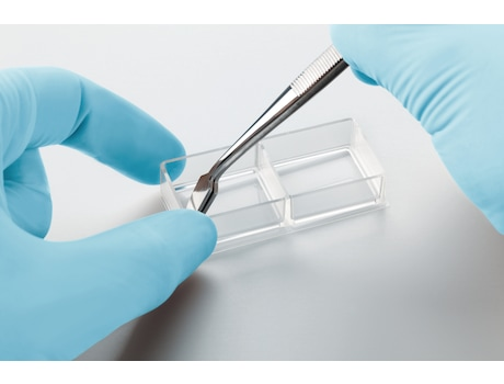 Eppendorf Cell Imaging Slides and Coverglasses
