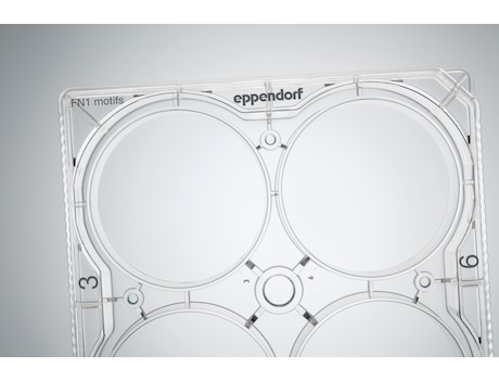 CCCadvanced™ FN1 motifs Cell Culture Plates