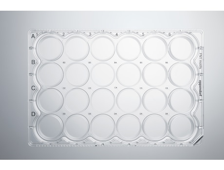 CCCadvanced® FN1 motifs Cell Culture Plates