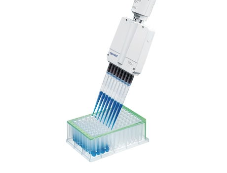 Image – ep T.I.P.S. elongated