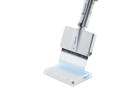 Eppendorf 24-channel pipette dispenses liquid in 384-well plate
