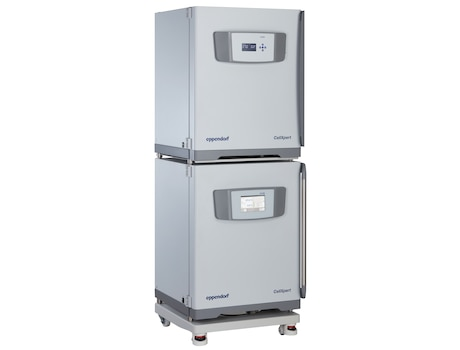 Stacked cell culture incubators CellXpert<sup>&reg;</sup>