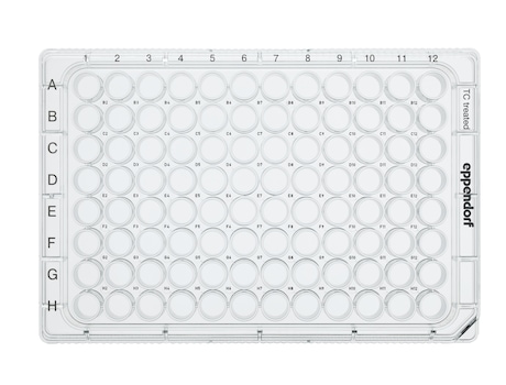 Eppendorf Cell Culture Plates, 96-Well, Sterile, pyrogen-, DNase-, RNase-, human and bacterial DNA-free. Non-cytotoxic, TC Treated, 0.2 mL, 80 plates, individually wrapped