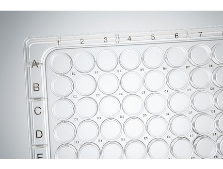 Image – Cell Culture Plate, 96-Well alphanumeric