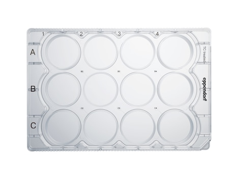 Eppendorf Cell Culture Plates, 12-Well, Sterile, pyrogen-, DNase-, RNase-, human and bacterial DNA-free. Non-cytotoxic, TC Treated, 2 mL, 60 plates, individually wrapped