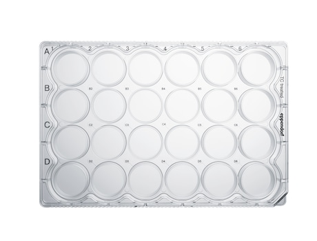 Eppendorf Cell Culture Plates, 24-Well, Sterile, pyrogen-, DNase-, RNase-, human and bacterial DNA-free. Non-cytotoxic, TC Treated, 1 mL, 60 plates, individually wrapped