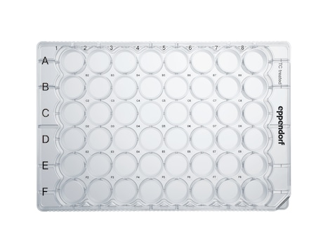 Eppendorf Cell Culture Plates, 48-Well, Sterile, pyrogen-, DNase-, RNase-, human and bacterial DNA-free. Non-cytotoxic, TC Treated, 0.5 mL, 60 plates, individually wrapped