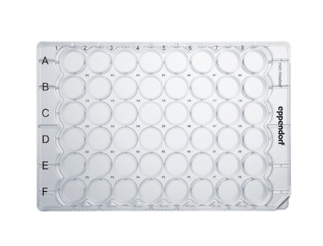 Eppendorf Cell Culture Plate, 48-Well, 滅菌済み、Pyrogens、RNase、DNase、DNAの検出なし、非細胞毒性, 未処理, 0.5 mL, 60 枚, 個別包装