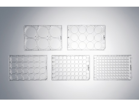 Image – Cell Culture Plates family, top view