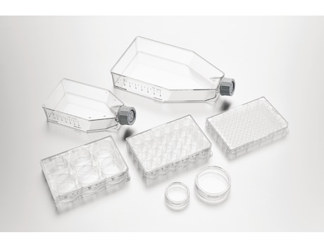 CCCadvanced® FN1 motifs Cell Culture Flasks