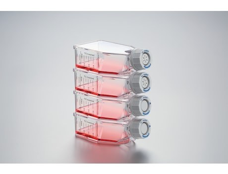 Eppendorf Cell Culture Flasks