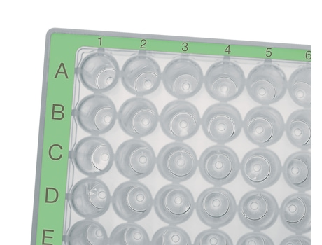 Eppendorf Deepwell Plates